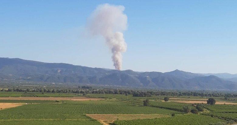 Bakan Pakdemirli, İzmir ve Manisa'daki yangınların kontrol altına alındığını açıkladı