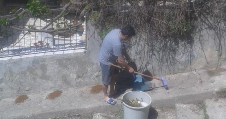İzmir'de utandıran görüntü! Hayvanlar için bırakılan mamaları çöpe attı