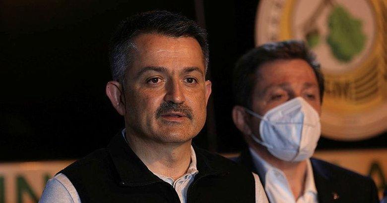 Tarım ve Orman Bakanı Pakdemirli son durumu paylaştı: 4 ilde 9 yangınla mücadelemiz sürüyor