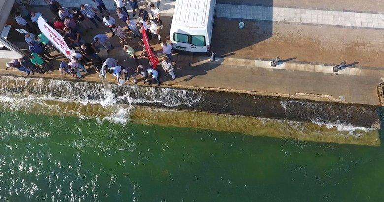 Muğla'da 100 bin sazan yavrusu göle bırakıldı
