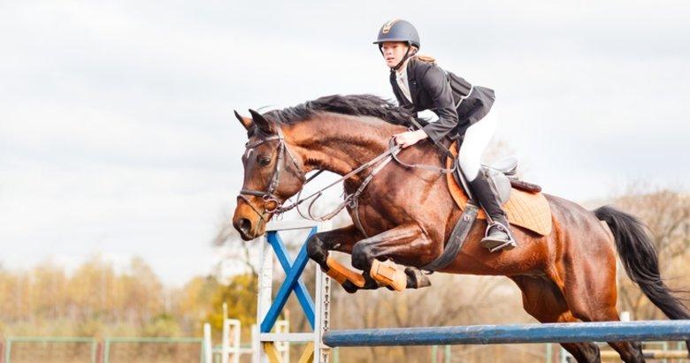 At ve insanın dostluğu: Binicilik