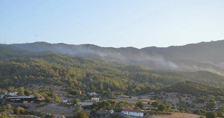 Aydın'da ormanlık alanda çıkan yangın nedeniyle bir mahalle tahliye edildi