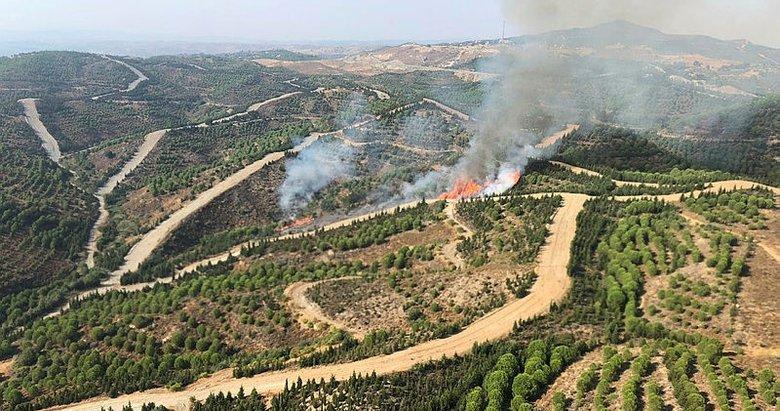 İzmir Seferihisar'da orman yangını