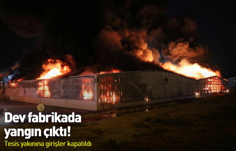 Aydında fabrika yangını