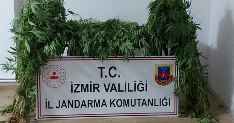 İzmir'in 9 ilçesinde uyuşturucu operasyonu: 12 gözaltı