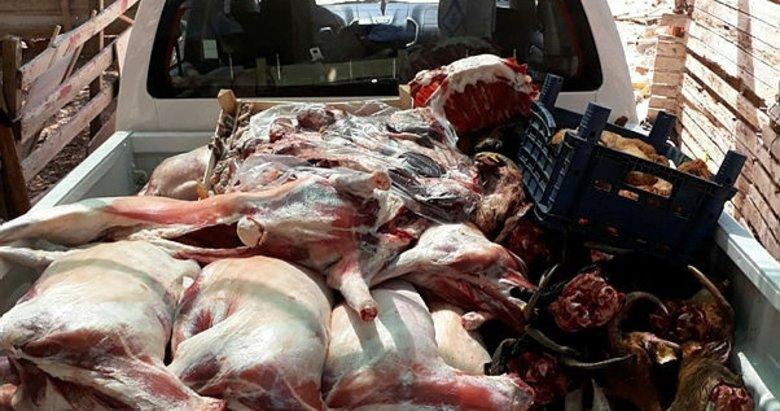 Tam 400 kilo! İzmir Buca'da kaçak et operasyonu