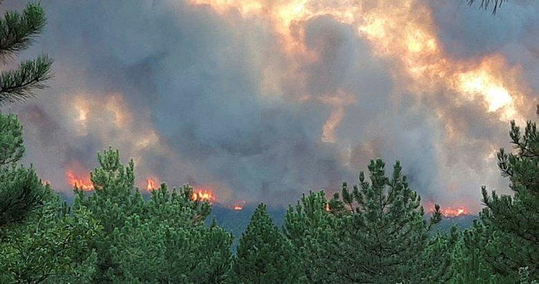 Kütahya Valisi açıkladı! Orman yangını kontrol altında