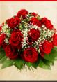 Sevgililer Günü'ne özel 7 milyon 200 bin gül