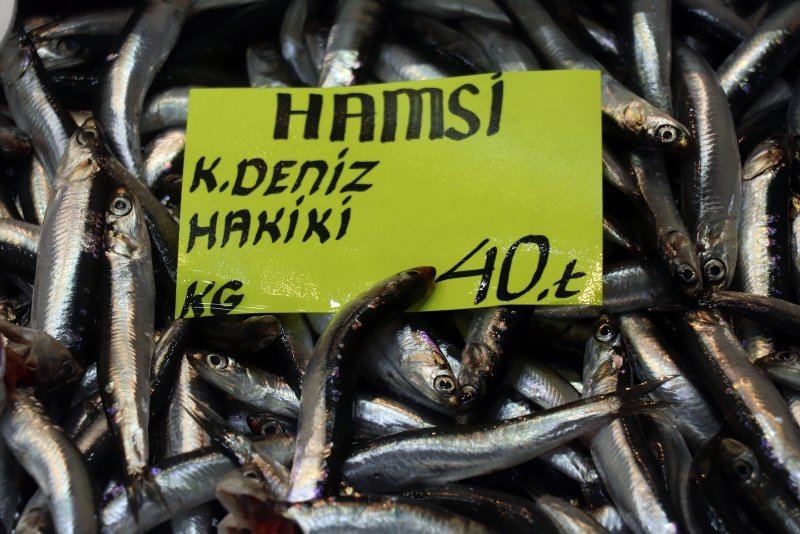 Çanakkale'de havalar ısındı balık tezgahları doldu! Balık fiyatları ne kadar oldu?