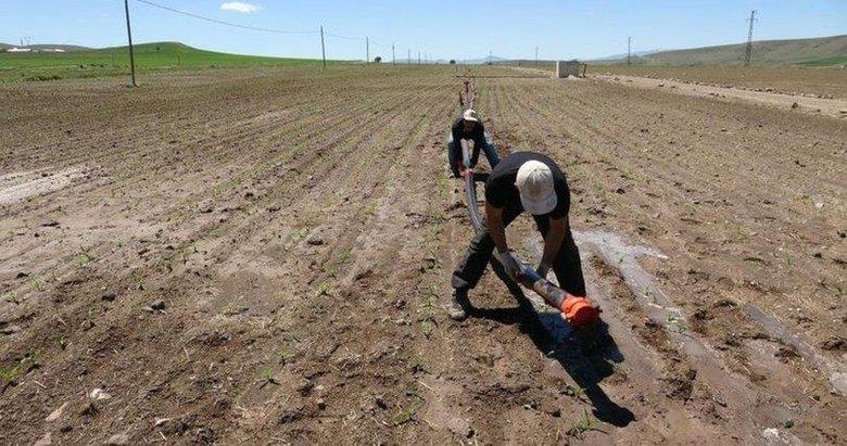 İlkbahar kuraklığı Türkiye genelinde etkili oldu