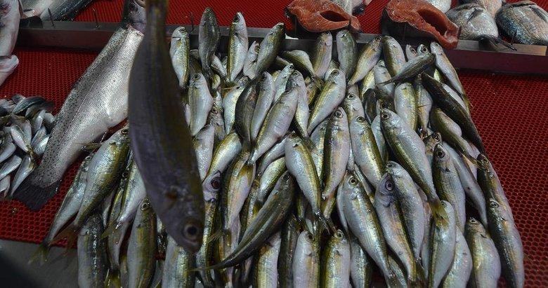 Trabzon'un balığı Ege'den