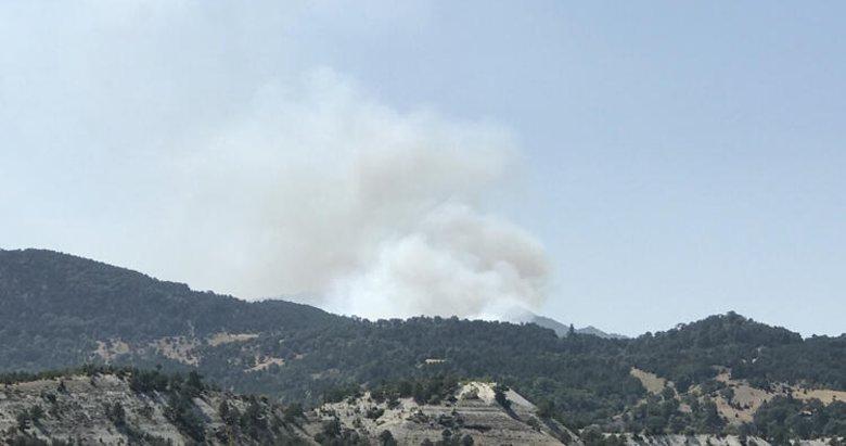 Kütahya'da Çavdarhisar ile Emet ilçeleri arasında orman yangını çıktı