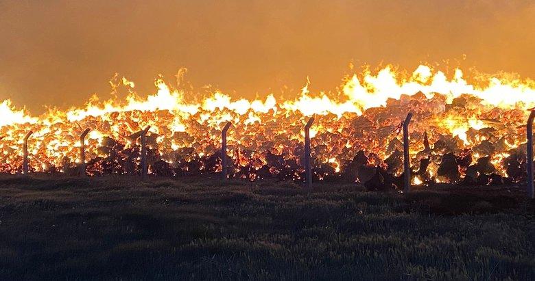 Biyoenerji elektrik santralinde yangın! Herkes seferber oldu
