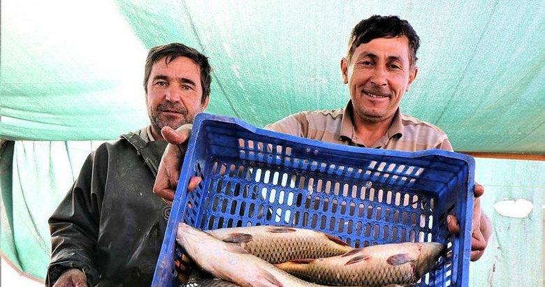 Denizi olmayan Manisa'dan balık ihraç ediyorlar