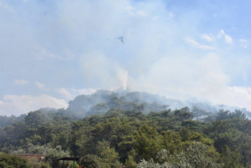 Muğla Bodrum'da orman yangını
