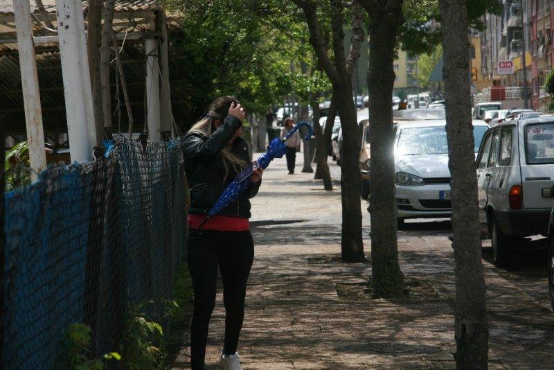 Denizli'de ağaçları ve kaldırımı kurtlar bastı