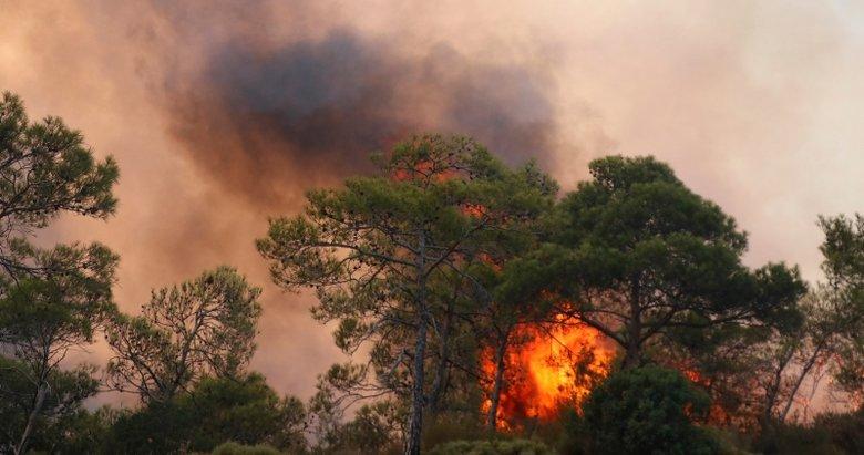 Dalaman'dan sonra Muğla'da da yangın kabusu!