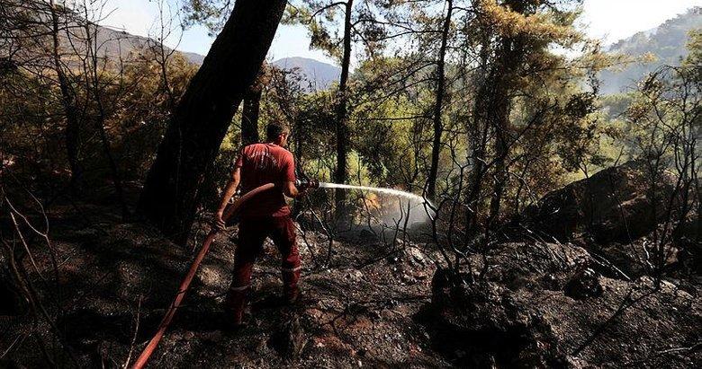 Orman mühendisleri yangınlarda sabotaj ihtimali üzerinde duruyor