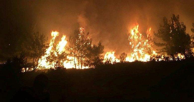 Kırkağaç'ta orman yangını