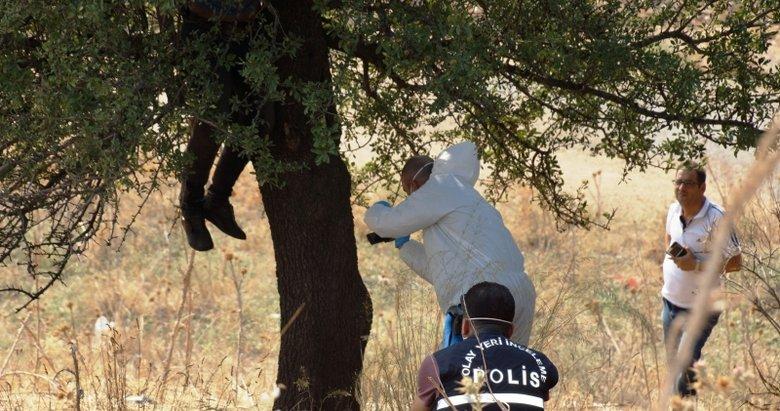 Aydın'da ağaca asılı halde erkek cesedi bulundu