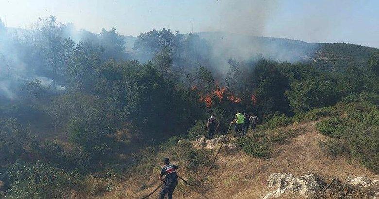 Bu yangının sebebi çok başka! 20 dönüm ormanı küle çevirdi