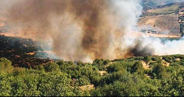 Köyceğiz'deki orman yangını kontrol altında