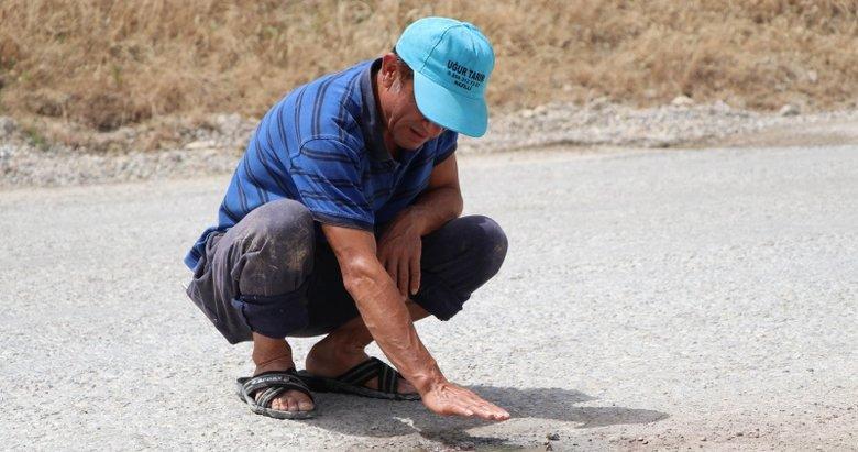 Denizli'de asfalt delindi! Sebebi herkesi şaşkınlığa uğrattı
