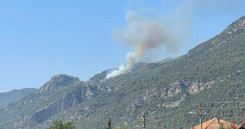 Yangın kabusu Ege'de! Köyceğiz de yanıyor