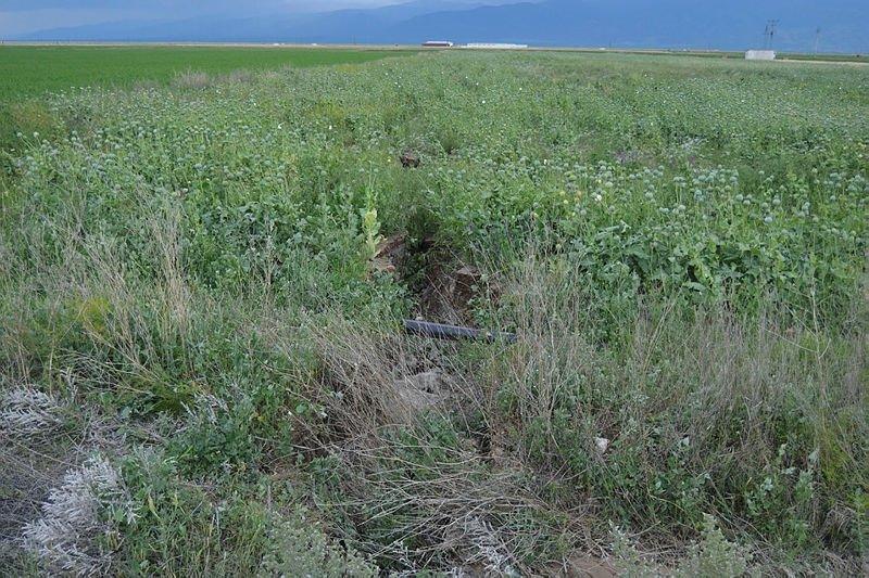 Afyonkarahisar'da etkili olan sağanak hasara yol açtı