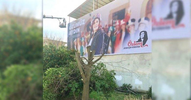 CHP Aydın Büyükşehir Belediye Başkanı Özlem Çerçioğlu afiş için ağaçları kesti