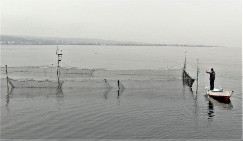 Çanakkale'de binlerce yıllık yöntemle günde 1 ton balık yakalıyorlar