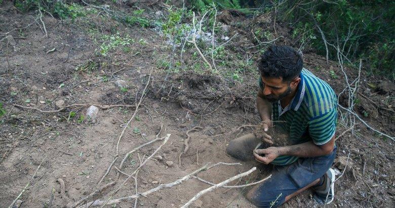 Suriyeli Hasan, İzmir'deki orman yangınını avuçlarıyla taşıdığı kumla söndürmeye çalıştı