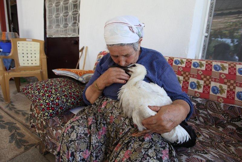Aydın'da Leylek Efeyi anne şefkatiyle büyüttü