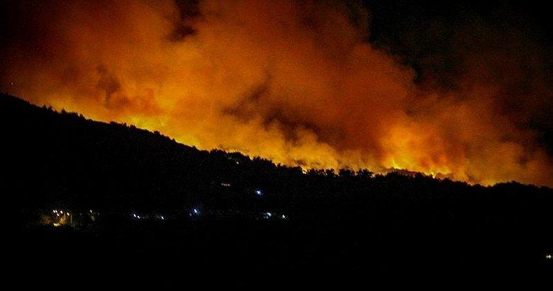 Sisam adasında yangın