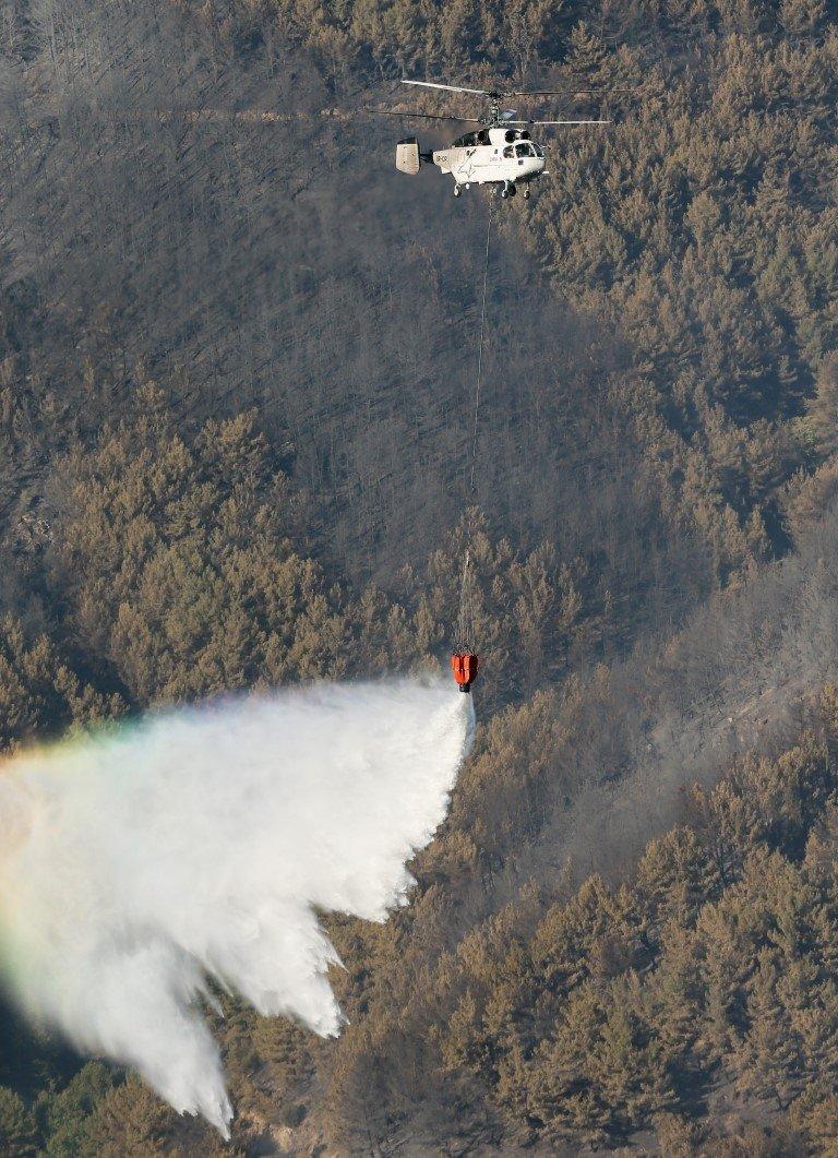 Orman yangınları ile ilgili iddialar ve gerçekler
