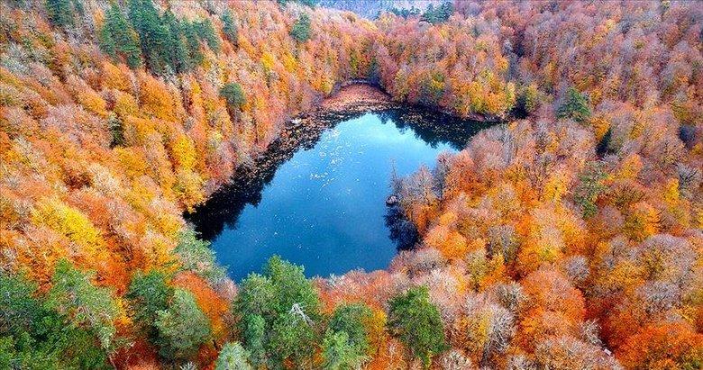 Tarım ve Orman Bakanlığı duyurdu! 3,2 milyon hektar alana özel statülü koruma