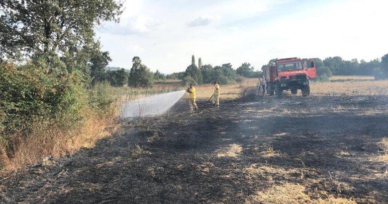 Çanakkale'de 10 dönüm tarım arazisi yandı
