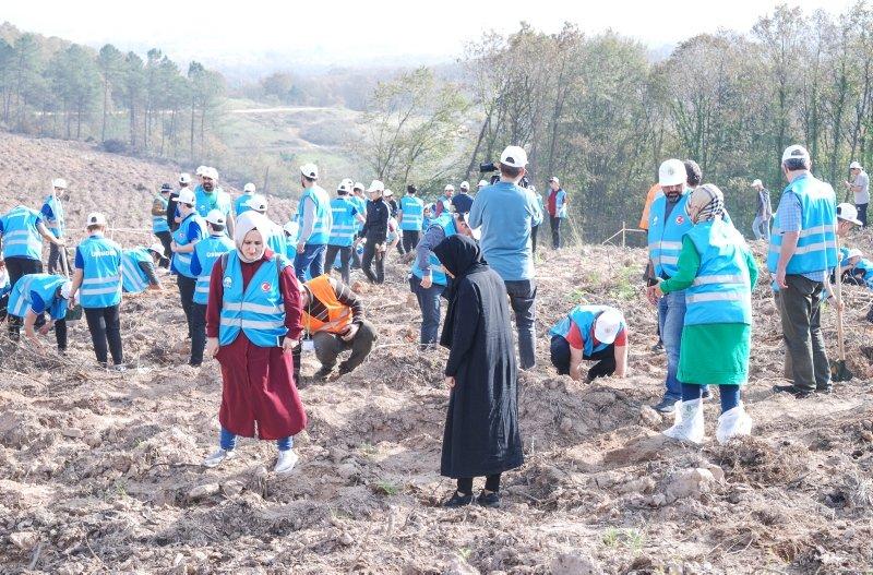 'Geleceğe Nefes' kampanyasıyla 81 ile 11 milyon ağaç dikiliyor! İşte illerden manzaralar...