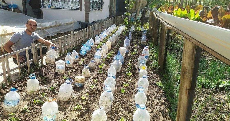 Kütahya'da çiftçiden ilginç yöntem! Sebze fidelerini soğuktan pet şişe ile koruyor