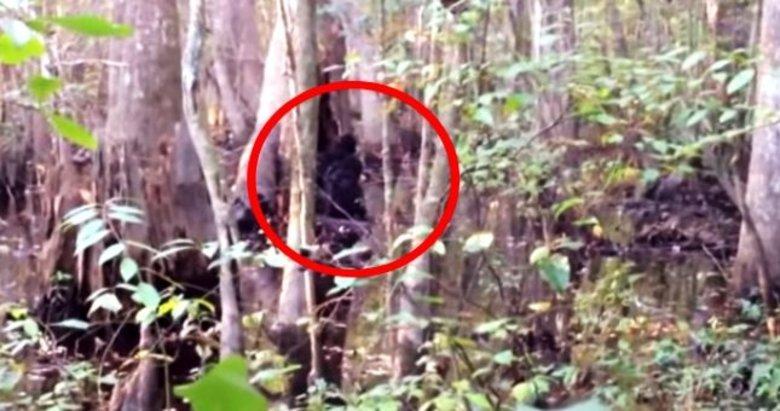 Ormanda gördüğü varlığın ne olduğunu öğrenince dehşete düştü!