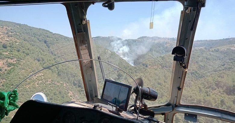 Son dakika: İzmir'de orman yangını! İşte son durum...