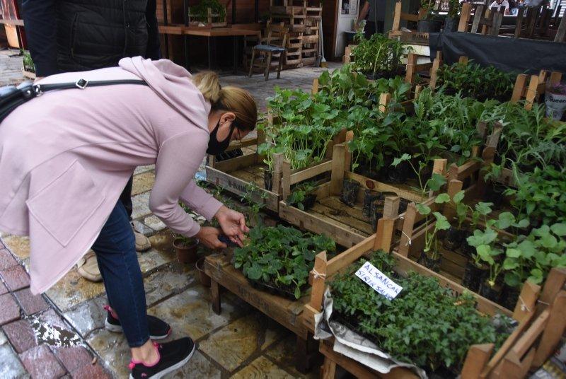 İzmir'de balkonlar çiçek bahçesine döndü