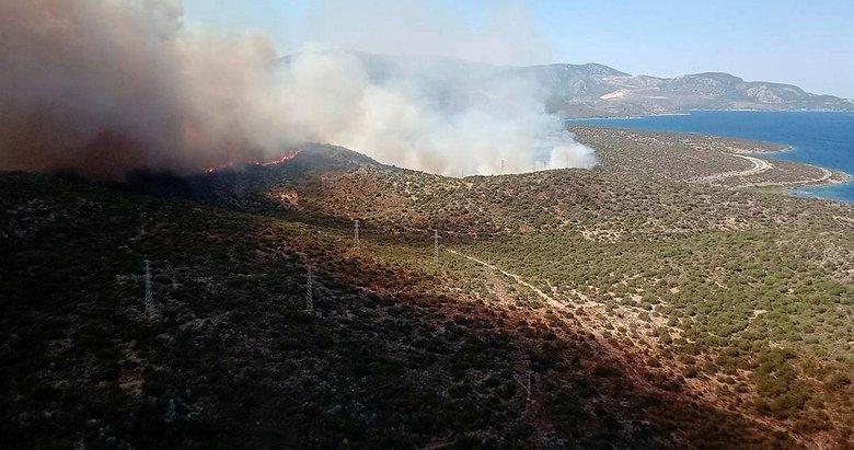 İzmir'de orman yangını! Uçaklar, helikopter ve arazözler harekete geçti