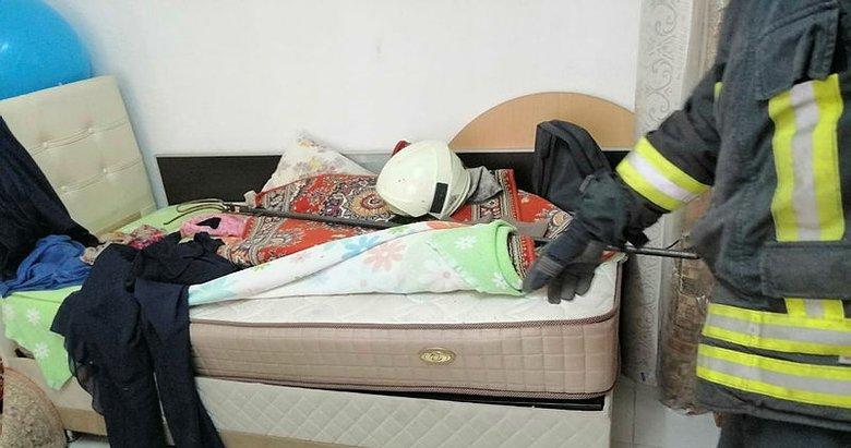 Muğla'da evin yatak odasında zehirli yılan yakalandı