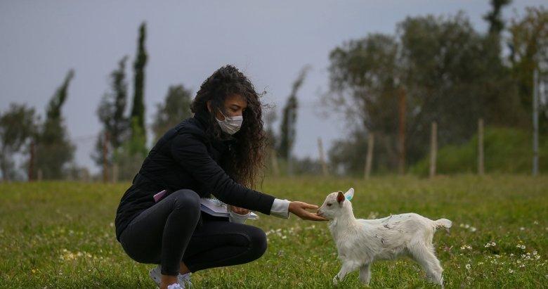 Çocukluk hayalinin peşinden gidip tek başına çiftlik kurdu