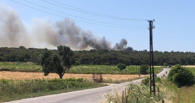 Bozcaada'da orman yangını