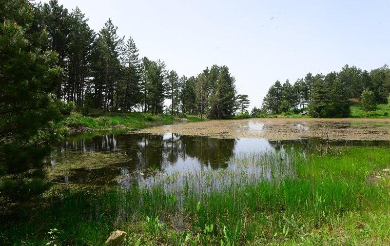 Ege Bölgesi'nde gezilecek yerler nereler? Sülüklü Göl keşfedilmeyi bekliyor! İşte Ege'de gezilecek yerler rotası