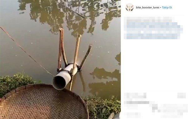 Balık avlama yöntemi görenleri şok etti!