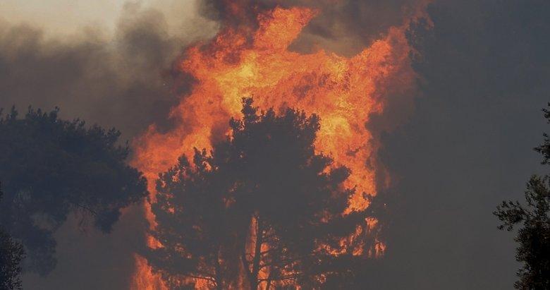 Manavgat'ta büyük yangın! Bakan Pakdemirli son bilgileri paylaştı