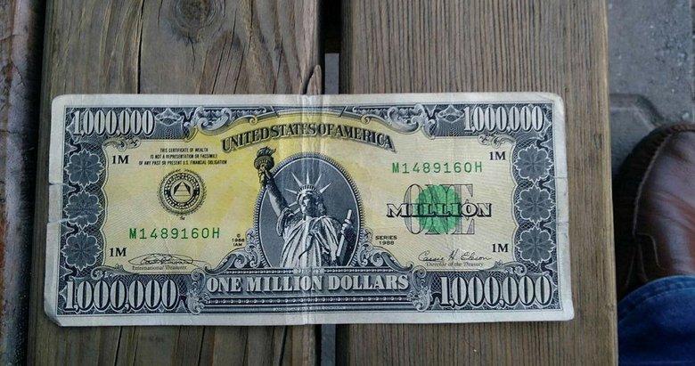 Türkiye'de 1 milyon dolarlık banknot yakalandı